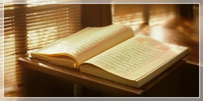 Tanya Jawab Pembagian Hewan Qurban