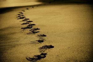 KELOMPOK YANG MENDAPATKAN PERTOLONGAN: AHLUSSUNNAH WAL JAMA'AH
