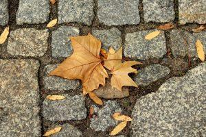 Pelajaran Berharga dari Keruntuhan Daulah Utsmaniyyah